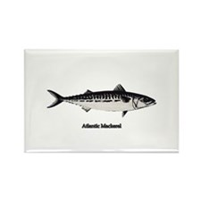 Atlantic Mackerel Rectangle Magnet