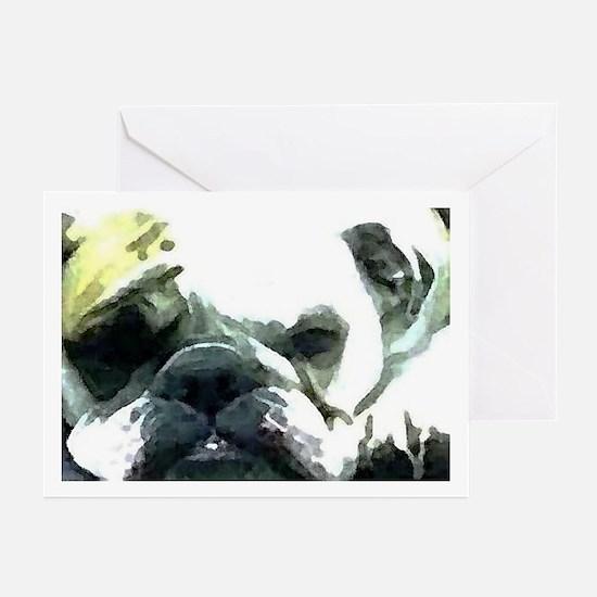 Resting Bulldog Greeting Cards (Pk of 10)