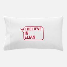 I Believe In Elian Pillow Case