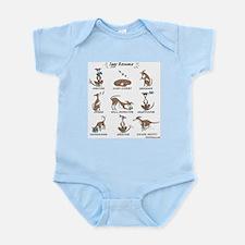 Iggy Resume / Italian Greyhound Resume Infant Body