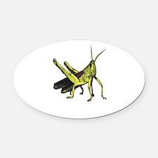 grasshopper Oval Car Magnet