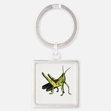 grasshopper Keychains
