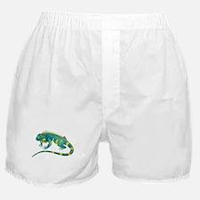 Iguana Boxer Shorts