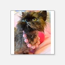 Freida wearing her favorite pink pearls Square Sti