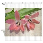 Pink Tulips In Bloom Shower Curtain