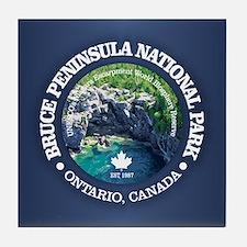 Bruce Peninsula National Park Tile Coaster