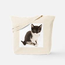 Cute Tuxedo Kitten Tote Bag