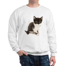 Cute Tuxedo Kitten Sweatshirt
