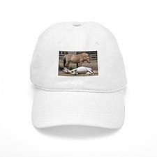 """""""Fjord mare & foal"""" Baseball Cap"""