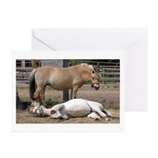 """Fjord mare & foal"" Greeting Cards (Pk of 10)"