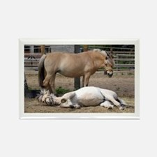 """""""Fjord mare & foal"""" Rectangle Magnet"""