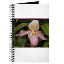 Orchid! Photo! beautiful flower Journal