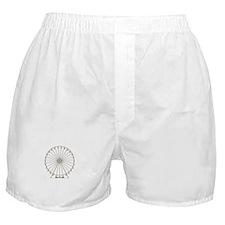 Ferris Wheel Boxer Shorts
