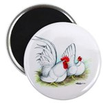 White Japanese Bantams Magnet