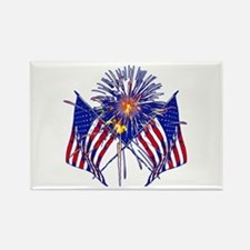 Celebrate America fireworks Rectangle Magnet