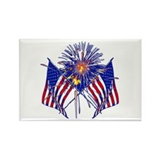 Celebrate America fireworks Rectangle Magnet (100