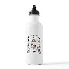 Dog Resume Water Bottle