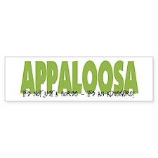 Appaloosa IT'S AN ADVENTURE Bumper Bumper Sticker