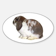 """Bunny 2"" Oval Decal"
