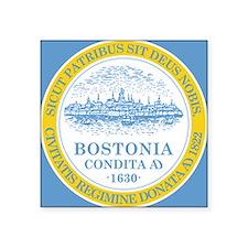 Boston Flag Shower Curtain Sticker