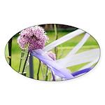 Lavender flower ball Sticker (Oval 50 pk)
