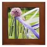 Lavender flower ball Framed Tile