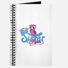 Going to be a Big Sister Again! Journal