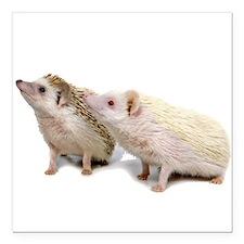 "Rosie Hedgehog Square Car Magnet 3"" x 3"""