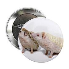 """Rosie Hedgehog 2.25"""" Button"""