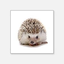 Rosie hedgehog Sticker