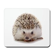 Rosie hedgehog Mousepad