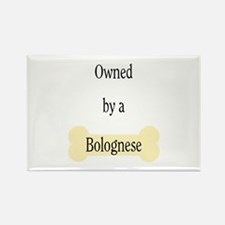 Owned by a Bolognese Rectangle Magnet (100 pack)