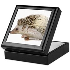 Rosie Hedgehog Keepsake Box