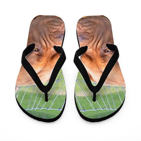 Dogue de Bordeaux Flip Flops