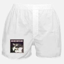 Funny 60th Birthday (Cat) Boxer Shorts