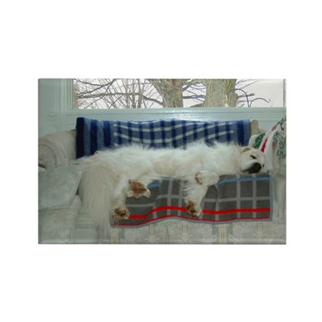 Great Pyrenees Rectangle Magnet (100 pack)