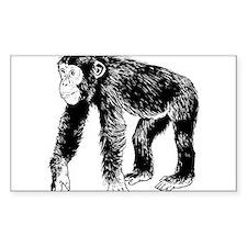 Chimpanzee Decal