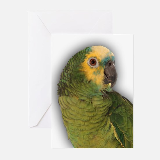 Amazon Blue Front Parrot Greeting Cards (Package o