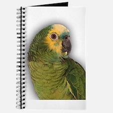 Amazon Blue Front Parrot Journal