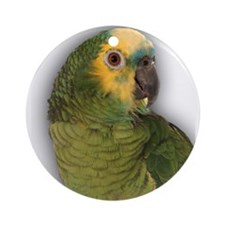 Amazon Blue Front Parrot Ornament (Round)