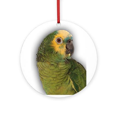 Amazon Blue Front Parrot Ornament (Round)