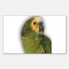 Amazon Blue Front Parrot Rectangle Decal