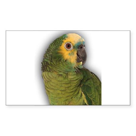 Amazon Blue Front Parrot Rectangle Sticker