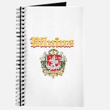Vilnius City Designs Journal