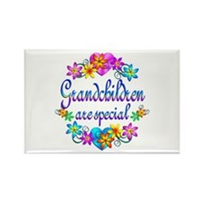 Grandchildren are Special Rectangle Magnet (10 pac