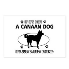 Canaan Dog merchandise Postcards (Package of 8)