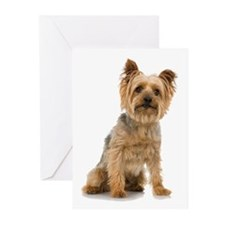Yorkshire Terrier Greeting Cards (Pk of 20)
