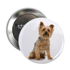 "Yorkshire Terrier 2.25"" Button (10 pack)"