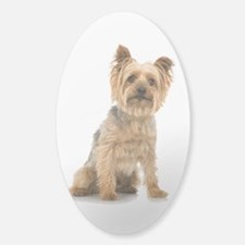 Yorkshire Terrier Decal