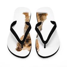 Yorkshire Terrier Flip Flops